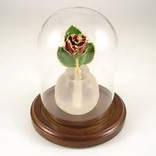 rose in glass 24k gold mini enchanted rose in glass dome love is a rose