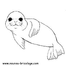 Coloriage Phoque en souriant dessin gratuit à imprimer