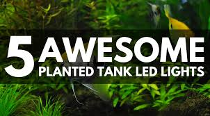 best led light for planted tank 5 best led light fixtures for your planted tank 2018 updated guide