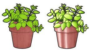 comparison between 2 standard markers and 2 chameleon color tones
