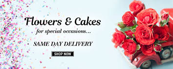 same day delivery flowers send buy flowers online same day flower delivery in india