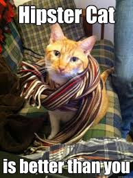 Hipster Cat Meme - hipster cat is better than you misc quickmeme