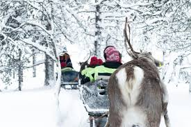 myths and facts about reindeer and the sami people