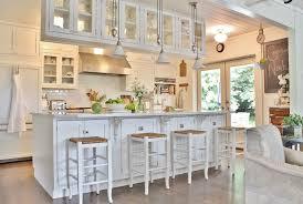 houzz glass kitchen cabinet doors my houzz busy family farmhouse farmhouse kitchen