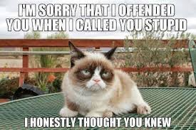 19 Awesome Grumpy Cat Christmas - grumpy cat quotes grumpy cat wednesday displaying 19 gallery