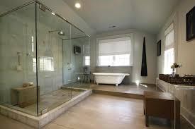 Master Bathrooms Ideas Houzz Idea Ahouston Bathrooms Master Bathrooms Design Ideas Houzz