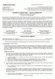Edi Consultant Resume People Soft Consultant Resume Peoplesoft Hrhcm Consultant People