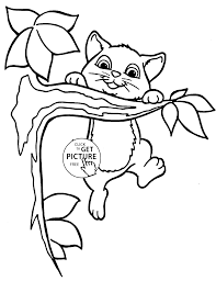 cute small cat animal coloring page for kids animal coloring