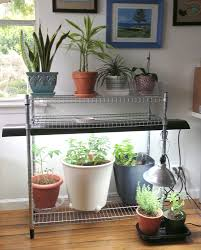 my indoor garden for under 100 with ikea stuff the la lady