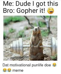 Gopher Meme - me dude i got this bro gopher it just you and meme dat motivational