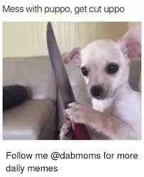 Daily Memes - mess with puppo get cut uppo follow me for more daily memes meme