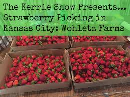Grinter Farms The Kerrie Show 2017 Kansas City Summer Bucket List
