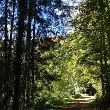 Bad Teinach Herbstspaziergang In Bad Teinach Mmth De U2013 Bei Marion Und