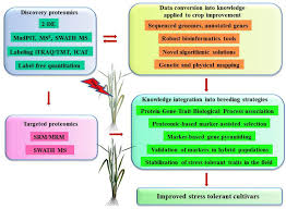 frontiers advances in plant proteomics toward improvement of