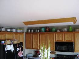 What Are The Best Kitchen Cabinets What Are The Best Kitchen Cabinets U2014 Luxury Homes Simple