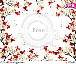 and black butterfly flower frame free stock photos images