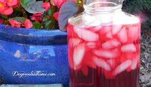 better than kool aid u0027 recipe kid approved happy mom