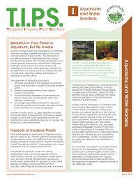 invasive non native plants clean drain dry invasive species council of british columbia