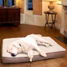 Tempur Pedic Dog Bed Orthopedic Dog Bed Ebay