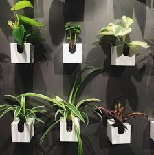 16 things at muji we saw and loved plants and planters