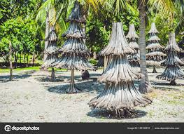 christmas trees made from recycled materials u2014 stock photo