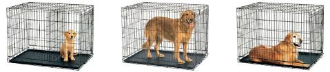 australian shepherd kennel size what size dog crate do you need the ultimate guide animalso