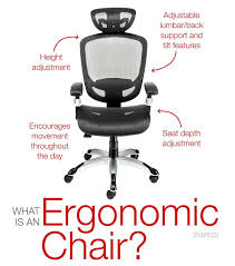 Office Chair Back Support Design Ideas Appealing Desk Best Ergonomic Chair With Lumbar Support Office Of