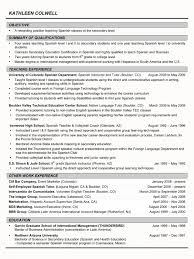 C Level Resume Examples by Stylish How Long Should An Executive Resume Be Resume Format Web