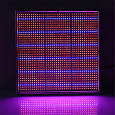 led grow lights 100w 1131red 234blue led grow light plant growing l garden