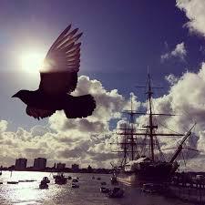 HMS Warrior by Bea Mendyk  BRITISH LOCAL HISTORY