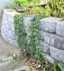 cheap garden retaining wall ideascinder block ideas hollow