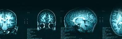 dr manish taneja radiology and minimimally invasive