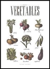 affiche cuisine affiche de cuisine avec légumes posters et affiches de cuisine