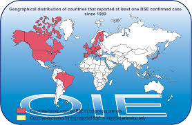 World Wide Map Map Oie World Organisation For Animal Health