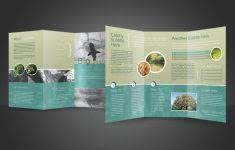 free tri fold brochure template word csoforum info