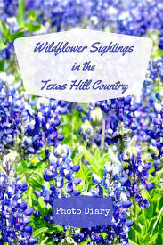 Texas Hill Country Map The 25 Best Texas Hill Country Ideas On Pinterest