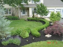 18 boxwood shrubs landscaping ideas bold idea thebusylife us