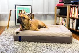 Kong Dog Beds Touch Dog Beds U2013 Thewhitestreak Com