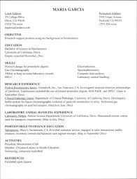 Resume For Internship Template Resume Exles Thebridgesummit Co