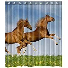 amazon com horse shower curtain