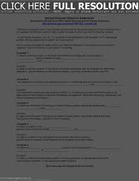 resume summary examples strong objective state peppapp