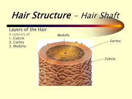relaxers u0026 how to minimise the risk of hair loss when retouching