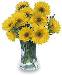 Vase Of Sunflowers Vases Design Pictures Best Sample Images Vase Of Flowers