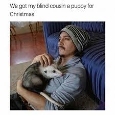 Blind Meme - we got my blind cousin a puppy for christmas meme xyz