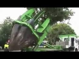 new tree cutting machine kasimi