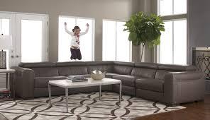Dark Gray Living Room by Ideas Grey Furniture Living Room Pictures Grey Chairs Living