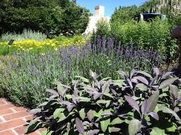 Botanical Garden Design by Garden Inspiration Thinking Outside The Boxwood Olbrich Botanical