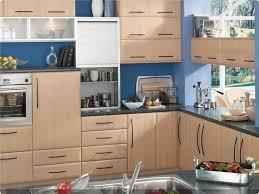Kitchen Cabinet Doors Painting Ideas Kitchen Design 20 Do It Yourself Kitchen Cabinets Painting Ideas