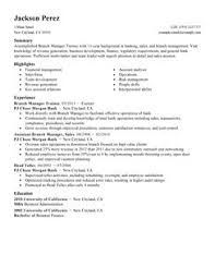Executive Summary For Resume Examples by Parts And Service Manager Resume