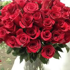 3 dozen roses dozen roses in a vase